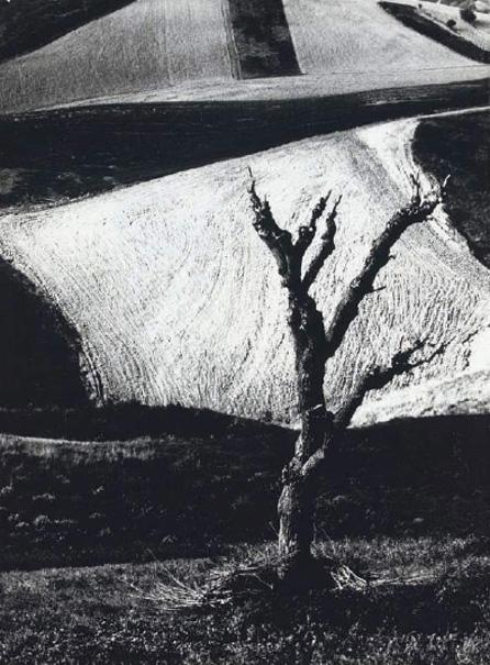 Giacomelli-03.jpg
