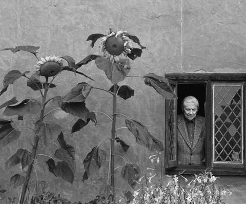 Arthur Koestler by Sam Haskins
